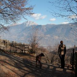 Südtirol 07